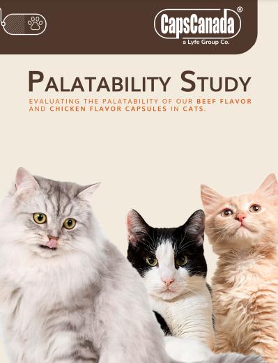 palatability-study-cats