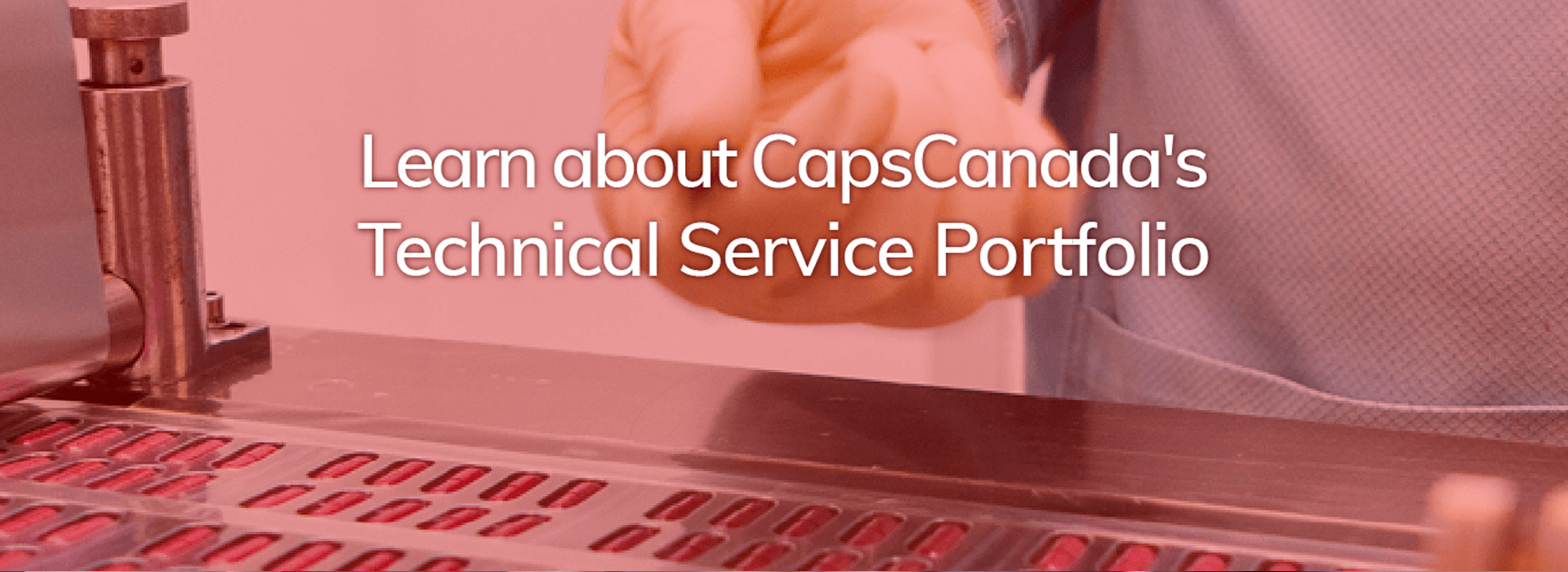 Technical Portfolio: Learn about CapsCanada's services