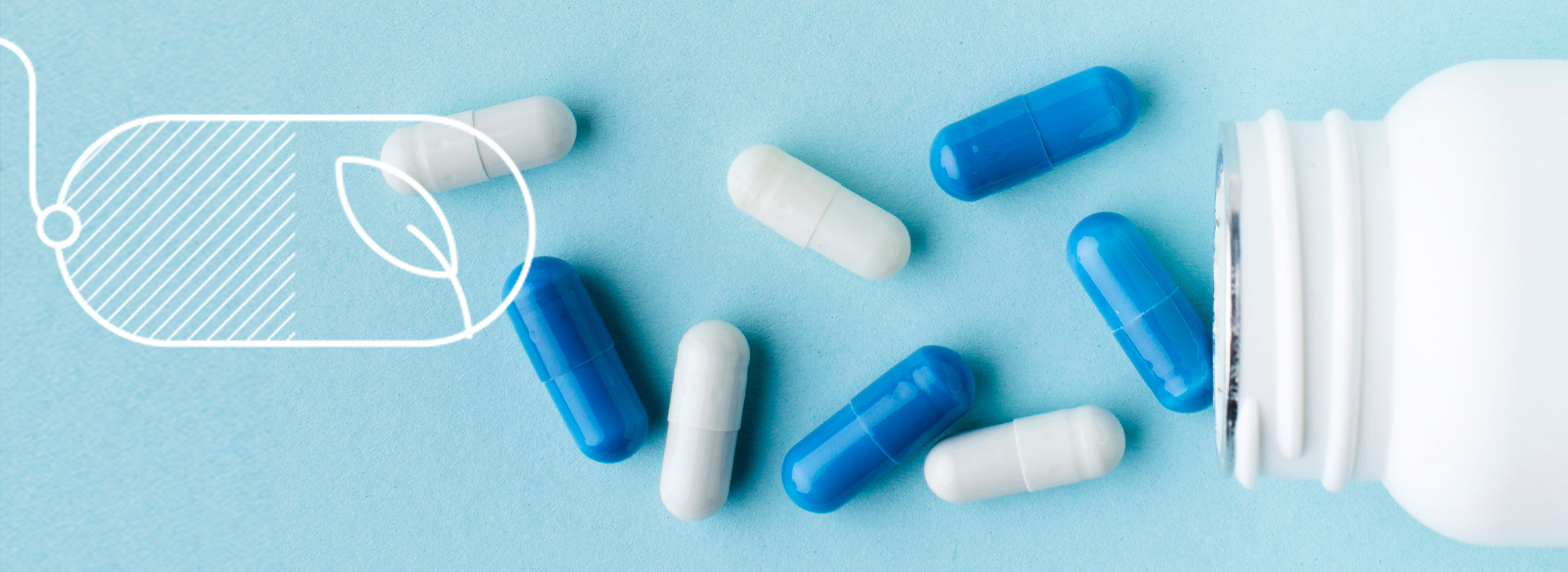 Gelatin capsules vs. HPMC capsules: What are the differences?